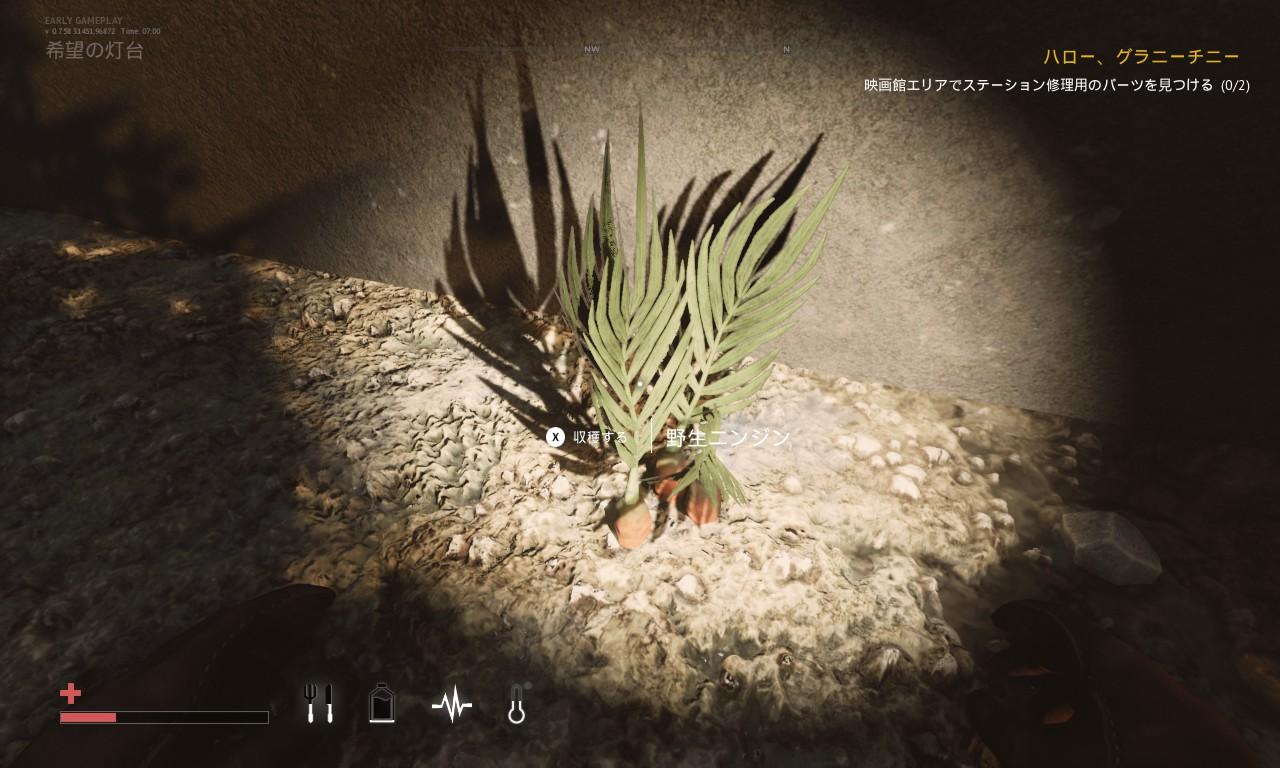 Desolate 植物